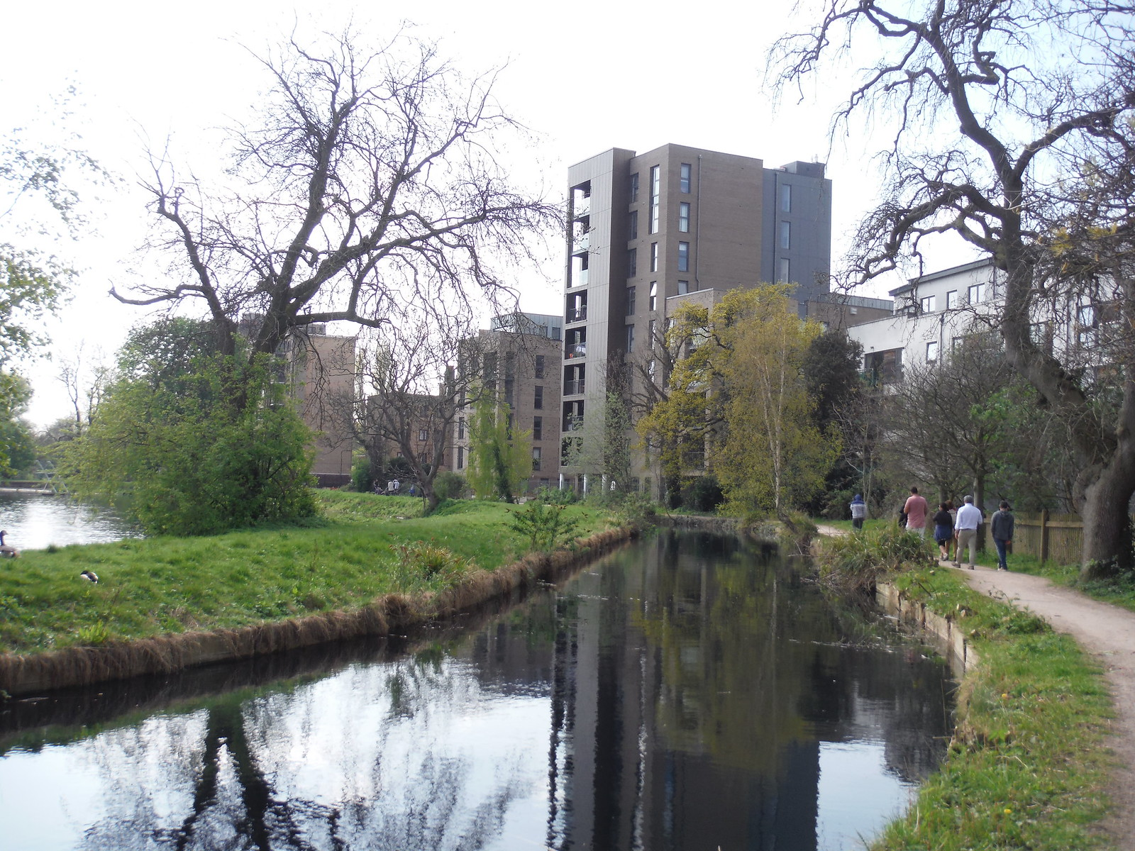 The New River, Stoke Newington SWC Short Walk 26 - Woodberry Wetlands (Stoke Newington Reservoirs)