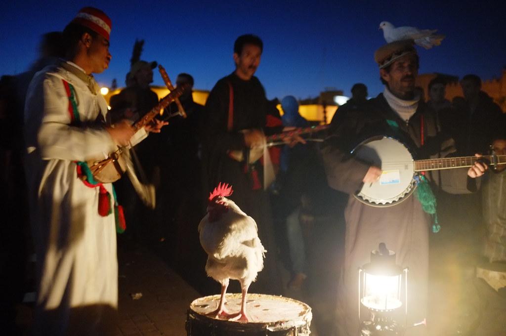 Berber musicians / showmen