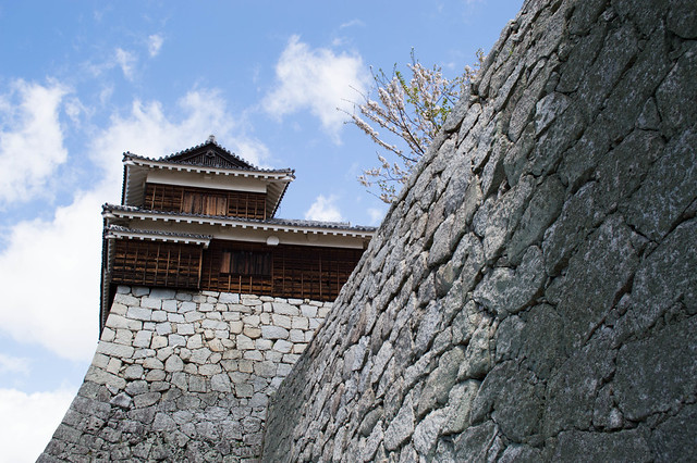 stone wall and castle
