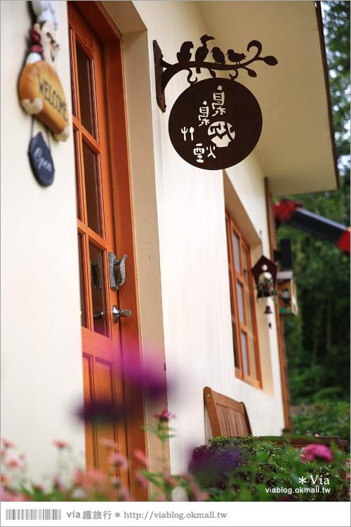 【新竹景點推薦】森林鳥花園~親子旅遊的好去處!在森林裡鳥兒與孩子們的樂園16