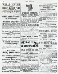 Bunyip adverts c1864 (12)