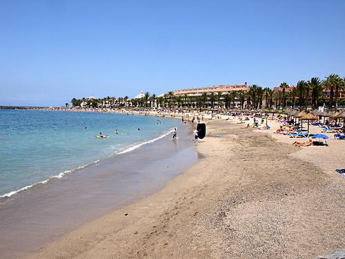 Playa El Camison, Playa de Las Americas
