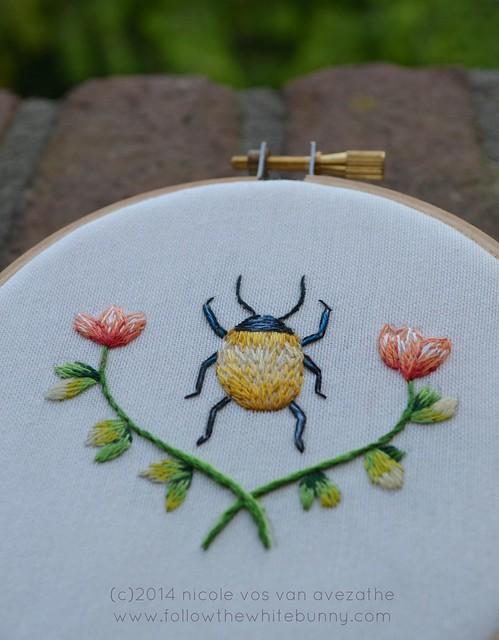 yellow beetle close