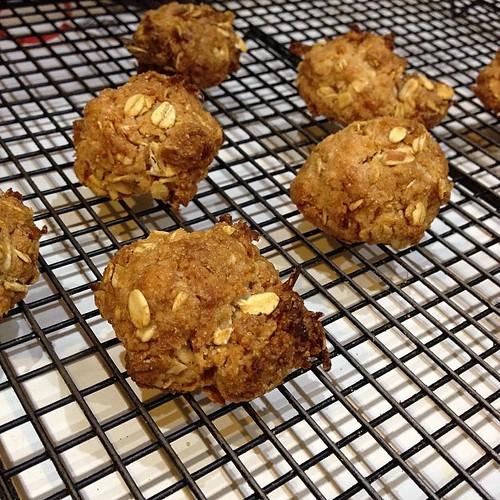 ANZAC Biscuits FTW! #food #bakimg #foodcatspens #yum
