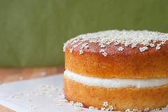 hot milk sponge cake ai fiori di sambuco