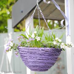 Spray painted hanging basket
