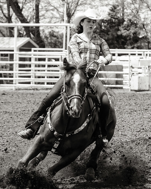 Ashland rodeo 2014 - Pole bending 7 bw