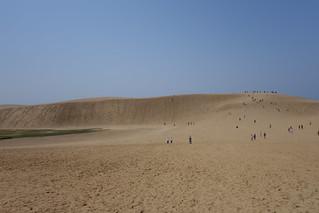 鳥取砂丘(3)