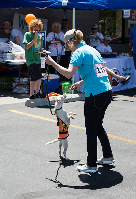 walk_for_the_animals-20140504-178