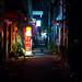 Neko in the Alley by David Panevin