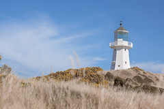 Tales of a Lighthouse