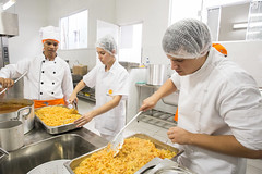 culinary art, cook, food, food processing, dish, cuisine, cooking, person,