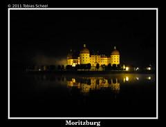 Moritzburg bei Nacht und Nebel IV