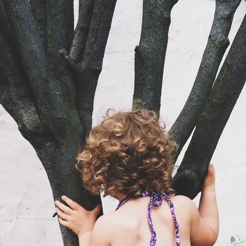 tree kiss