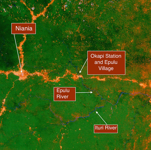 early satellite image Ituri roads