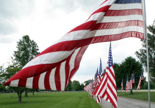 219/365 Memorial Flags