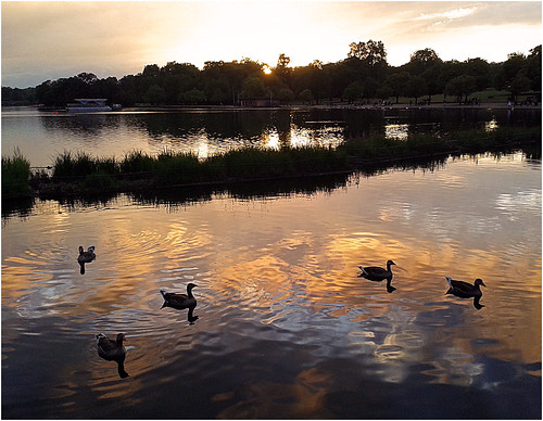 sunset london water clouds reflections ducks hydepark serpentine restlessfiona 29thjune2014