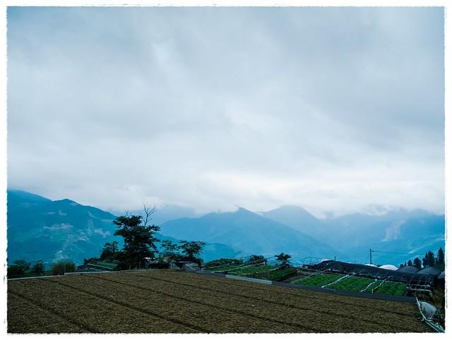 东瓮各庄村风景