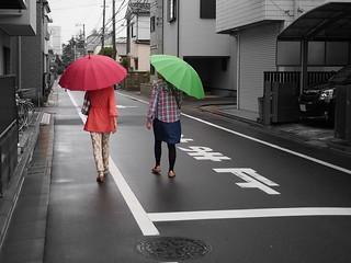 Rainy day . Edogawa . Tokyo