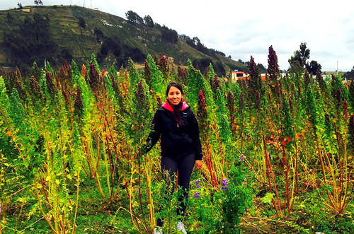 This summer Elisa Cárdenas studies poverty-reduction efforts for quinoa producers in Ecuador