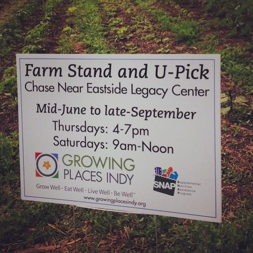 Growing Places Indy's Urban U-Pick is open for business!