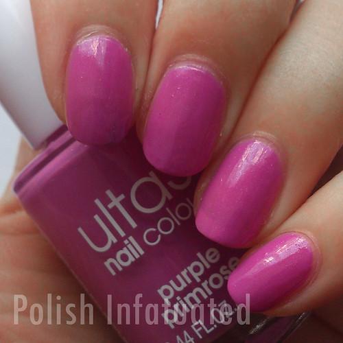 purple primrose1