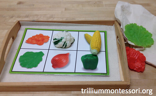 Vegetables in Mystery Bag (Photo from Trillium Montessori)