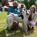 140525 Greyhound Extravaganza-0118