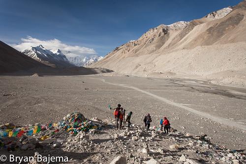 Tibet D6-10-269