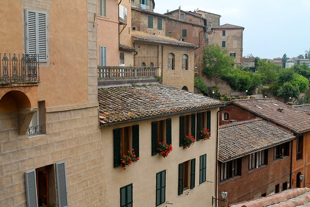 geraniums + Italy