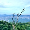 Reverse Volcano View SSV