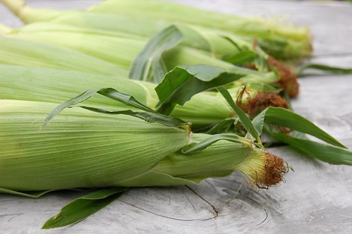 Sweet corn by Eve Fox, The Garden of Eating, copyright 2014