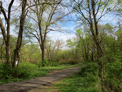 path into spring