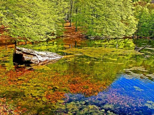 Lago dei due uomini-Lake of the two men