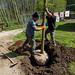 2017_04_14 plantations arbres Lasauvage