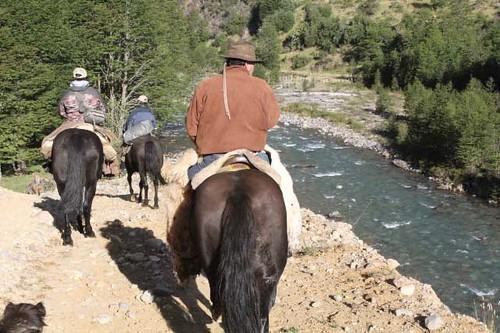 rio-magote-horse