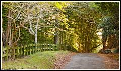 Travels to Norfolk Island