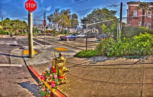 """Little Giant"" Fire Hydrant hdr panorama"