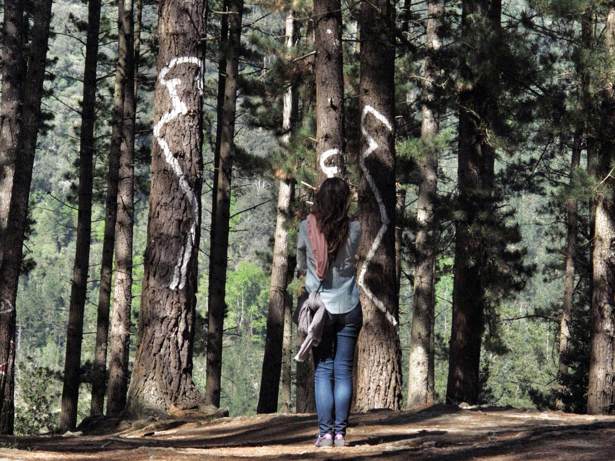bosque de oma_personas_agustin ibarrola