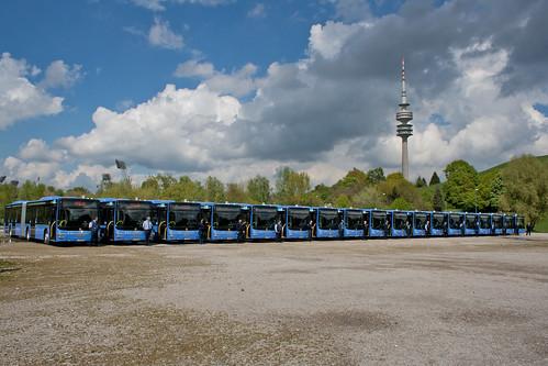 Sauber aufgereiht und nach Nummern geordnet stehen die 18 Busse auf dem Tollwoodgelände