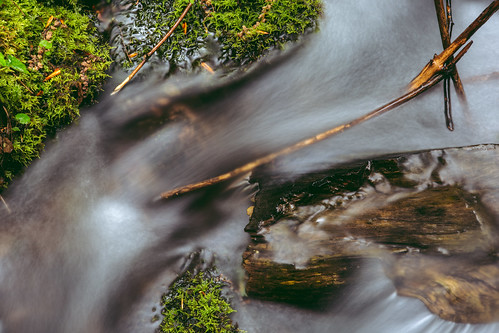 water flow motion stream pacificnorthwest northbend olalliestatepark stick moss longexposure wood washington johnwestrock
