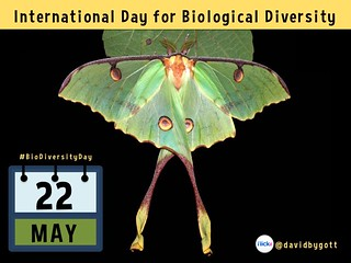 May 22 is the International Day for Biological Diversity #BioDiversityDay @CBDNews @UNBiodiversity #idb2015