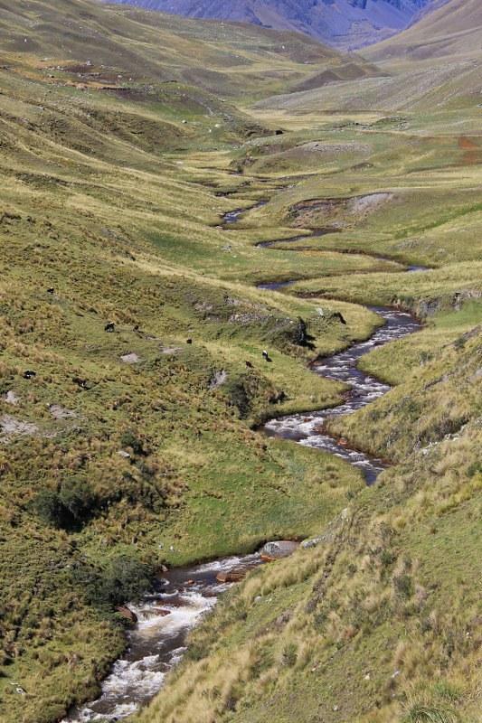 Quebrada Uquian, above Olleros.