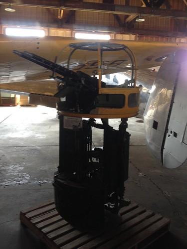 Camera Roll-802