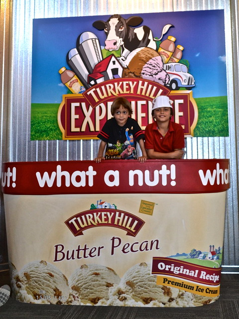 Fun - Turkey Hill Ice Cream Experience