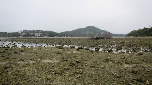 Koh Samui Chaweng lowest tide of the year 0.88m