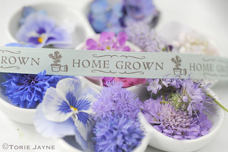 Home Grown flower colours