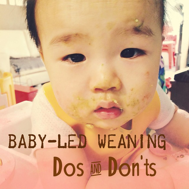 baby led weaning guidelines pdf