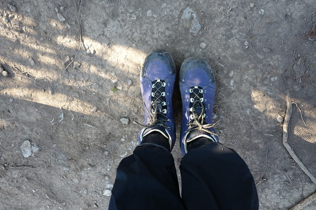 140625 Gorilla Hike (3)