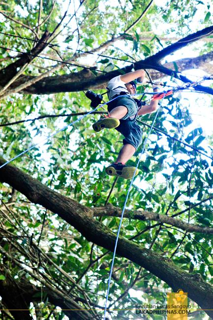Treetop Adventure at the Chocolate Hills Adventure Park (CHAP)